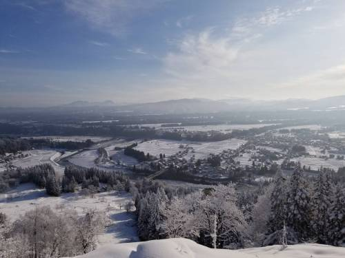雪散歩1.jpeg