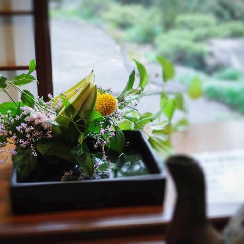 日比谷花壇②.JPG