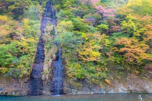 秋の滝 .JPG