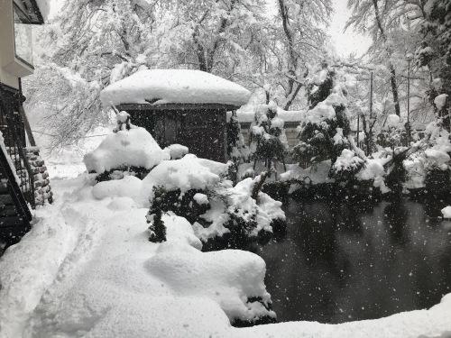 2.12.15雪2.jpg