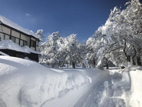 2.12.18雪景色2 (1).jpg