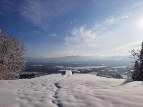 雪散歩5.jpeg
